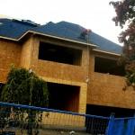 Building-in-Development-4